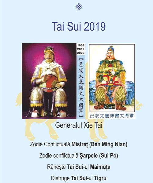 Tai Sui (5)a