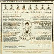 placa-celor-7-buddha-ai-medicinei3